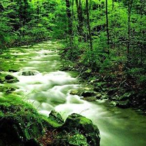 rios limpios